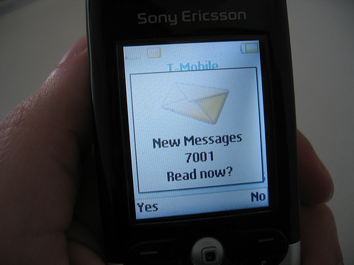 Text Message Marketing Survey: Many Not Interested in