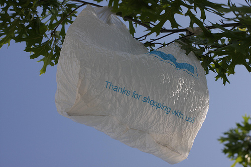 Plastic Bags Survey: Half Support New Ban in California