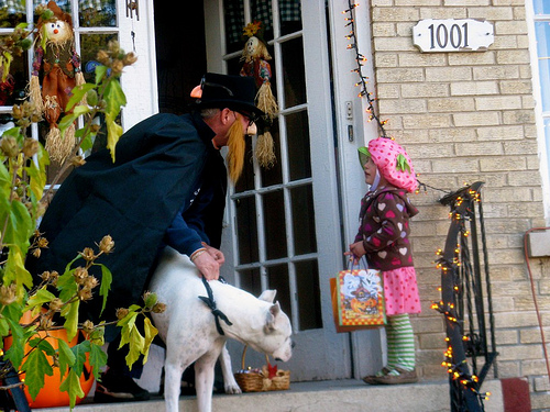 Trick-or-Treating Survey: Safety Concerns Not Impacting Many Plans