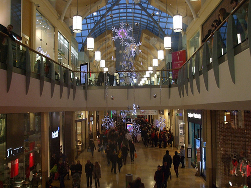 Black Friday Shopping Survey: Crowds Expected to Hold Steady