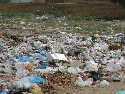 Plastic Bags Survey: Incentives Could Increase Reusable Bags