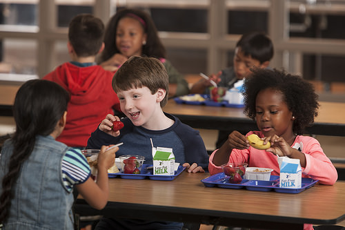 School Lunch Survey: Healthy Options Unlikely to Have Negative Impact