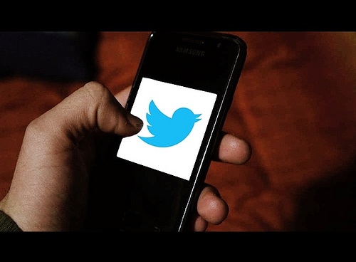Twitter Survey: Platform Likely to Continue Growth