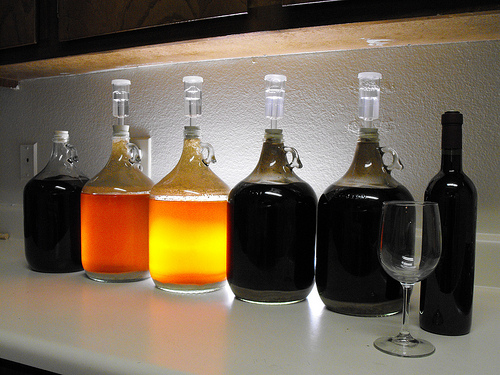 Home Brewing Survey: Home Brewing Not Likely to Impact Other Beer Sellers